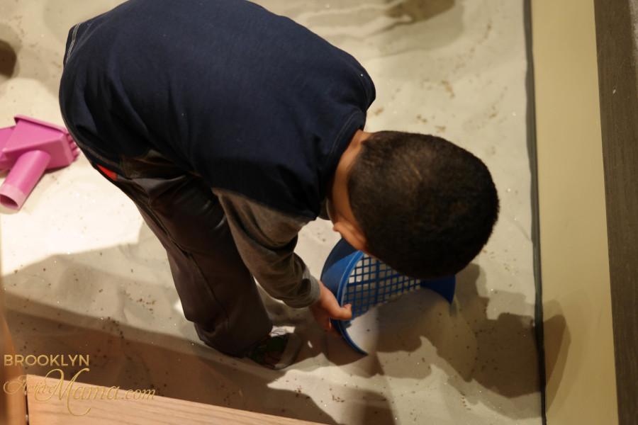 Brooklyn Children's Museum-2482