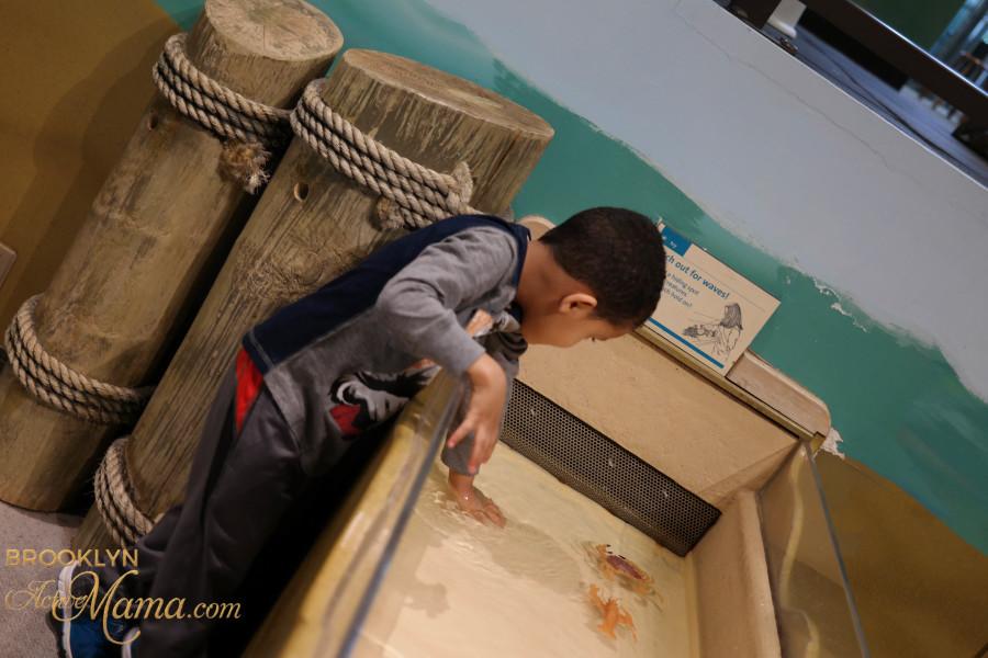 Brooklyn Children's Museum-2540