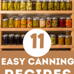 Want to start canning, but have no idea where to start? Check out these easy minimal ingredient recipes perfect for canning at any level! Jams and Salsa included!