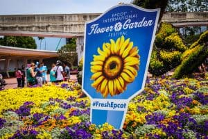The Epcot Flower and Garden Festival is one of the most forgeous times at Walt Disney World! Check out the sights and the must see attractions at this year's festival! #disneyworld #epcot #traveltips