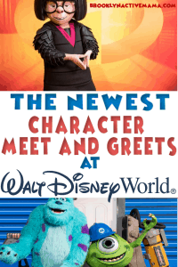 In addition to some new character dining, there have been a slew of dance parties and new character meet and greets across Walt Disney World. Check out these can't miss character experiences in Walt Disney World! #DisneyTips #WaltDisneyWorld