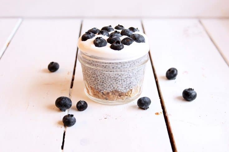 Healthy Blueberry Chia Pudding