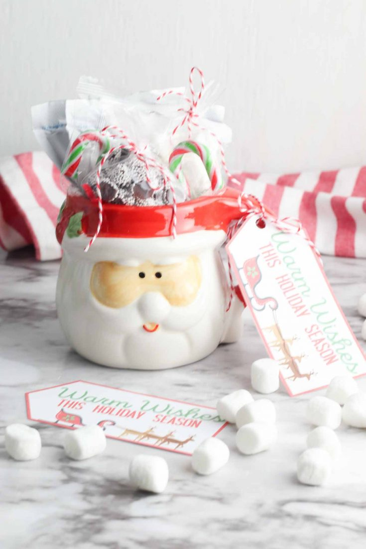 Easy DIY Dollar Tree Hot Chocolate Mug Gift - Instructions and Printable!